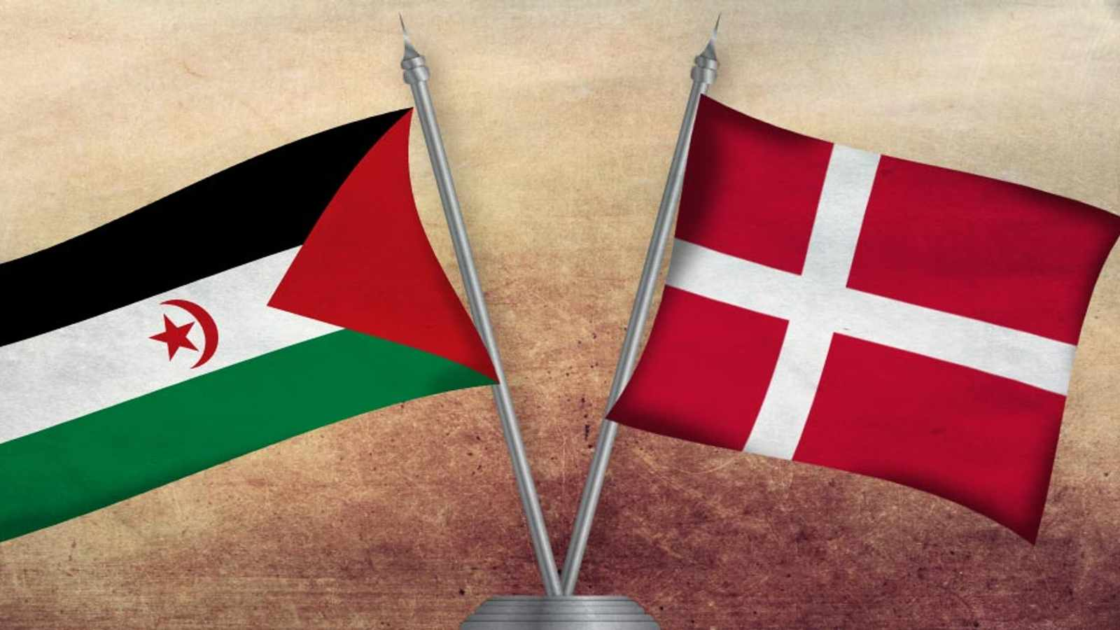 Danish appeal against trade with Western Sahara