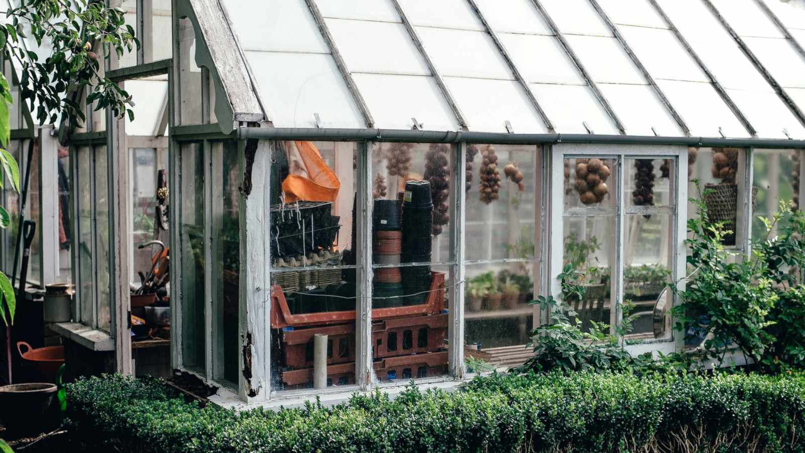 How to garden sustainably