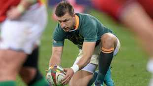 It's all or nothing for Springboks in second Test against British and Irish Lions