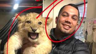 Najwa Petersen's son and co ordered to pay fine for keeping lion as pet