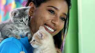 Of cats, kittens and matric examinations