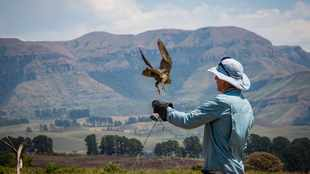 Thinking of studying nature conservation? Here's what you need to know