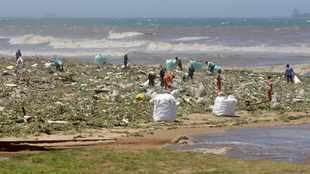 Trust asks SA to extend protection of the ocean