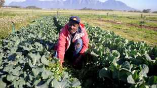 Land reform is more urgent than ever before