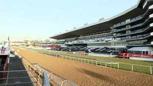 Phumelela creditors back horse racing support plan