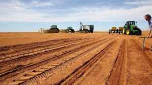 Science, technology and innovation as enablers for sustainable agricultural