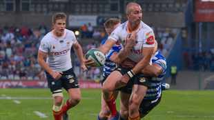 'Hidden agendas at play' in SA Rugby as Cheetahs players worry about PRO14 future