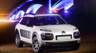 'Bubble-wrapped' C4 Cactus now in SA