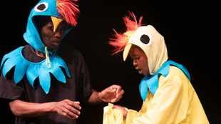 Magic tale of Hen and Hawk ready to charm theatre lovers