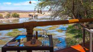 Why autumn is the best time to visit a game lodge