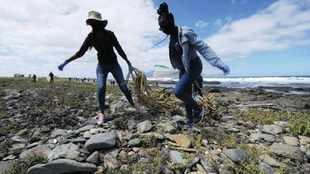 Robben Island gets a major clean-up