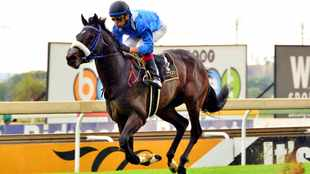 Hawwaam officially scratched from Vodacom Durban July