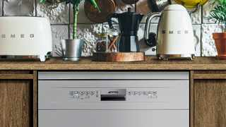 A dishwasher is undeniably one of life's greatest kitchen companions.