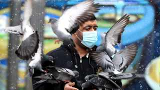 A man wearing a face mask feeds pigeons. Picture: EPA-EFE/FEHIM DEMIR