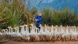 A rural resident grazes geese at a poverty alleviation industrial base in Hanjiang village, Yongxin county, east China's Jiangxi province. Picture: Zhu Guozhao/People's Daily Online