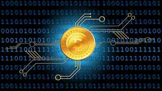 According to Bitcoin bulls, this cryptocurrency will eventually be an acceptable asset.