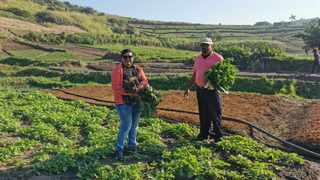 Balamanie Govender, left, and her husband, Krish Naidu, on their 14 hectare farm.