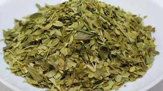 Buchu is an indigenous herb and is available in a variety of forms including herbal waters and teas. Picture: Supplied