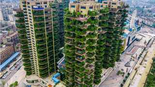 Built in 2018, the Qiyi City Forest Garden in Chengdu was meant to be a green paradise for residents. Up to 20 types of plants are grown at the balcony of each unit and the lush greenery is supposed to filter air and noise pollution in the city, Chengdu City, southwest China's Sichuan Province. Picture: Reuters