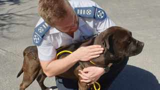 Chief Inspector Jaco Pieterse with one of the dogs rescued today Picture: Facebook