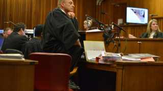 Chief prosecutor in the Oscar Pistorius murder trial, Gerrie Nel, gets another go at the paralympian with cross-examination in its second week at the high court in Pretoria, Monday, 14 April 2014. Nel, often likened to a bulldog, is challenging the claim by Pistorius that he accidentally killed his girlfriend Reeva Steenkamp by firing through a closed toilet door, mistaking her for an intruder in his house before dawn on 14 February 2013. Picture: Antoine de Ras/Independent Newspapers Ltd/Pool