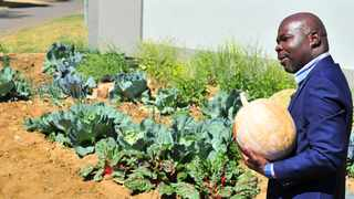 Djo BaNkuna in his controversial pavement garden outside his Theresapark, Pretoria North home. Picture: Oupa Mokoena/African News Agency (ANA)