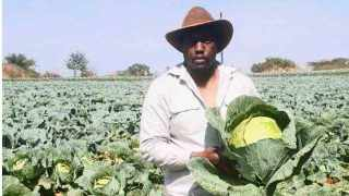 Engineer-turned-farmer Floyd Tshivhase is helping feed people and employs them. The writer says When this crisis is over, we will have a chance to reshape national production through the development of rural agriculture and agro-processing. We must re-instil the old values that communities had for agriculture by making farming skills and self-sufficiency fashionable again. Photo: African News Agency (ANA) Archives