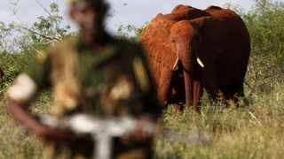 File photo: The rangers, who protect the wildlife from heavily armed poachers, have reportedly been receiving their wages late.