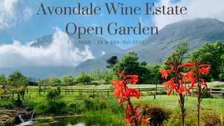 Finish your walk with a tasting of the organic and biodynamic wines at the Avondale Wine Cellar or book a meal at our highly acclaimed FABER restaurant which has recently been awarded by Haute Grandeur Global Excellence Awards as the Best Garden Restaurant in Africa.