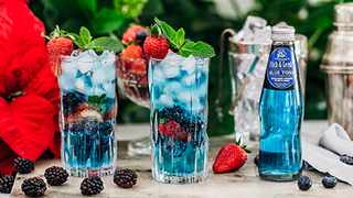 Fitch & Leedes launches new Blue Tonic