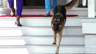 Former US First Lady Michelle Obama (L) and current US First Lady Jill Biden, wife of President Joe Biden, walk out with Biden's family dog Champ. File photo: Reuters/Yuri Gripas (UNITED STATES - Tags: POLITICS)