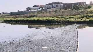 Friends of Zeekoevlei and Rondevlei chairperson Sidney Jacobs said raw sewage and plastics were reported flowing into the water from the Big Lotus River on September 17. Picture: African News Agency (ANA)