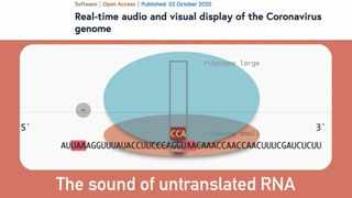 Genes of the coronavirus are like biological book chapters; they hold all the words that describe the virus and how it might function. Picture: YouTube screenshot