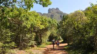 Kirstenbosch National Botanical Garden will grant free access to learners up to Grade 12 on weekdays. Picture: Supplied.