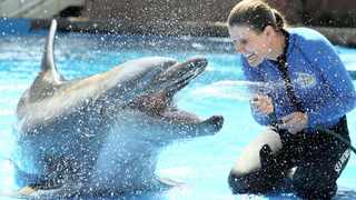 Lead animal behaviourist Kelly de Klerk prepares for the summer tourism season with 36-year-old Kelpie the dolphin, the first dolphin to be born at the old Seaworld.