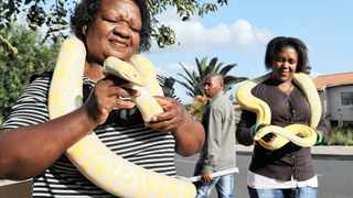 Lindiwe Mgomezulu and her daughter Nolwandle Duma with their Albino Burmese Pythons named Pepsi which is a female and Cola a male at her home in Orlando West where they have a snake show, Mgomezulu ownes five snakes inclueding an Anaconda named Dion.111 Picture: Matthews Baloyi1/16/2013
