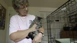 Mary Dow, a volunteer with Independent Animal Rescue in Durham, North Carolina, rescued Daisy the cat and paid $2 300 for surgery on its broken leg.