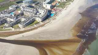 Milnerton Estuary, near the Lagoon Beach Hotel, resort and conference centre, where water discolouration was seen last week.