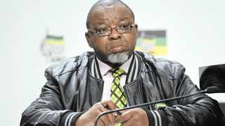 Mineral Resources and Energy Minister Gwede Mantashe has withdrawn an appeal at the Supreme Court of Appeal (SCA) on the recognition of black mining ownership signalling a return of regulatory certainty in mining companies.