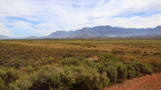Papenkuils Wetlands, one of the wetlands the Department of Environmental Affairs and Development Planning was involved in. Picture: Supplied