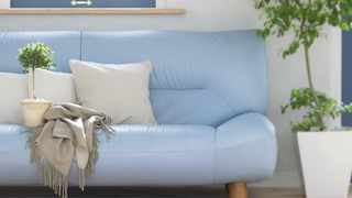 Picture for illustration purposes – no this is not the missing blue couch. Picture: SnappyGoat.com