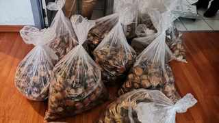 Police in the Eastern Cape have managed to recover R3.7 million worth of abalone. Picture: SAPS