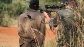 President Cyril Ramaphosa allegedly also owns a stake in a hunting company called Tsala Hunting Safaris. Picture: Supplied