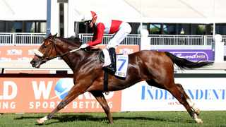 Rainbow Bridge first past the finish line at Independent on Saturday Drill Hall Stakes race day at at Greyville Racecourse last Sunday. Shelley Kjonstad/African News Agency (ANA)