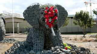 Representing blood and grief, artists decorated the 'Warwick Elephants' with crimson flowers after the sculptures were damaged by vandals. Picture: Shelley Kjonstad/African News Agency(ANA)