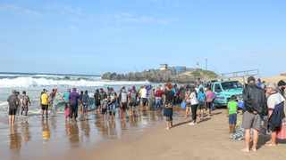 Sardine frenzy in 2020 as shoals were sighted off Amanzimtoti. With thousands of the fish spotted in Algoa Bay in the Eastern Cape, local fishermen hope the 2021 sardine run will be a bumper one. Picture: Leon Lestrade/African News Agency(ANA).