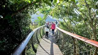 The Earth Hour event will be held at the Kirstenbosch Botanical Garden on Saturday. Photo: African News Agency (ANA) Archives