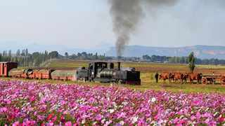 The Sandstone Spring Steam Festival in the Eastern Free State will take place between November 19 and 22,2020. Picture: Instagram/@sandstoneinaction.
