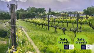 The picturesque Cape Winelands towns of Paarl and Wellington, only an hour from Cape Town, are the perfect destinations for a quick breakaway.