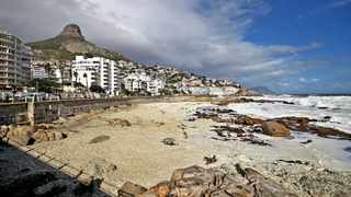 The shoreline at Bantry Bay. File photo: Willem Law